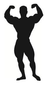 body-builder-shape-eu-mark