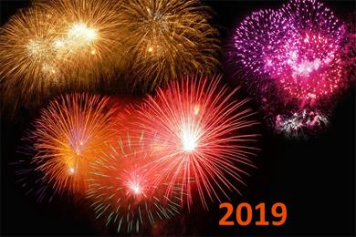 Ausblick auf 2019 und ein Frohes Neues Jahr!