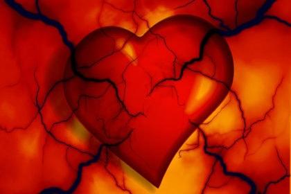 Keine Zwangslizenz für Cholesterinsenker