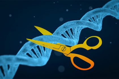 "CRISPR Genetic scissors: ""every person"" in priority right"