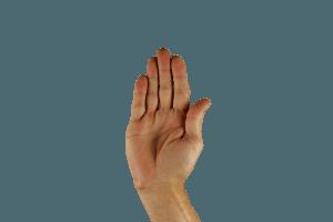 Widerspruch-Hand-Stop